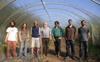 Staff members of the co-op inside a polytunnel