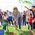 Mérida cuenta con más de 80,300 árboles nuevos