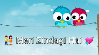 Tu Meri Zindagi Hai Whatsapp Status Love Video