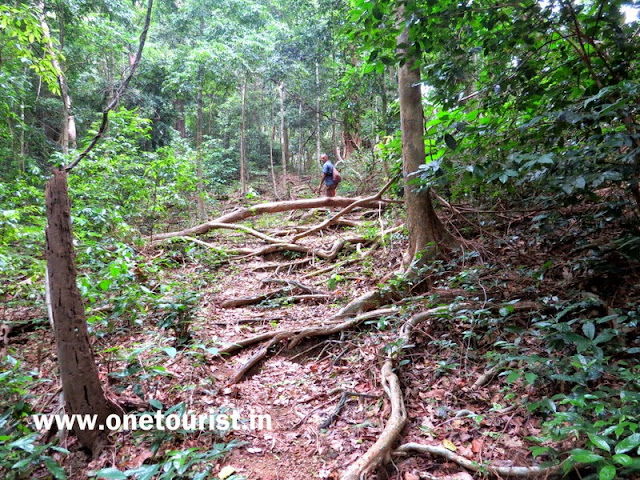 saddle peak trek , andaman
