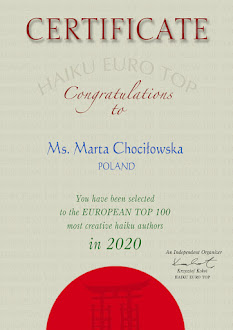 Haiku Euro Top 100 Certificates