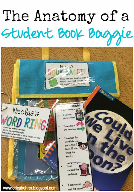 The Anatomy of a Book Baggie | Erica\'s Ed-Ventures | Bloglovin\'