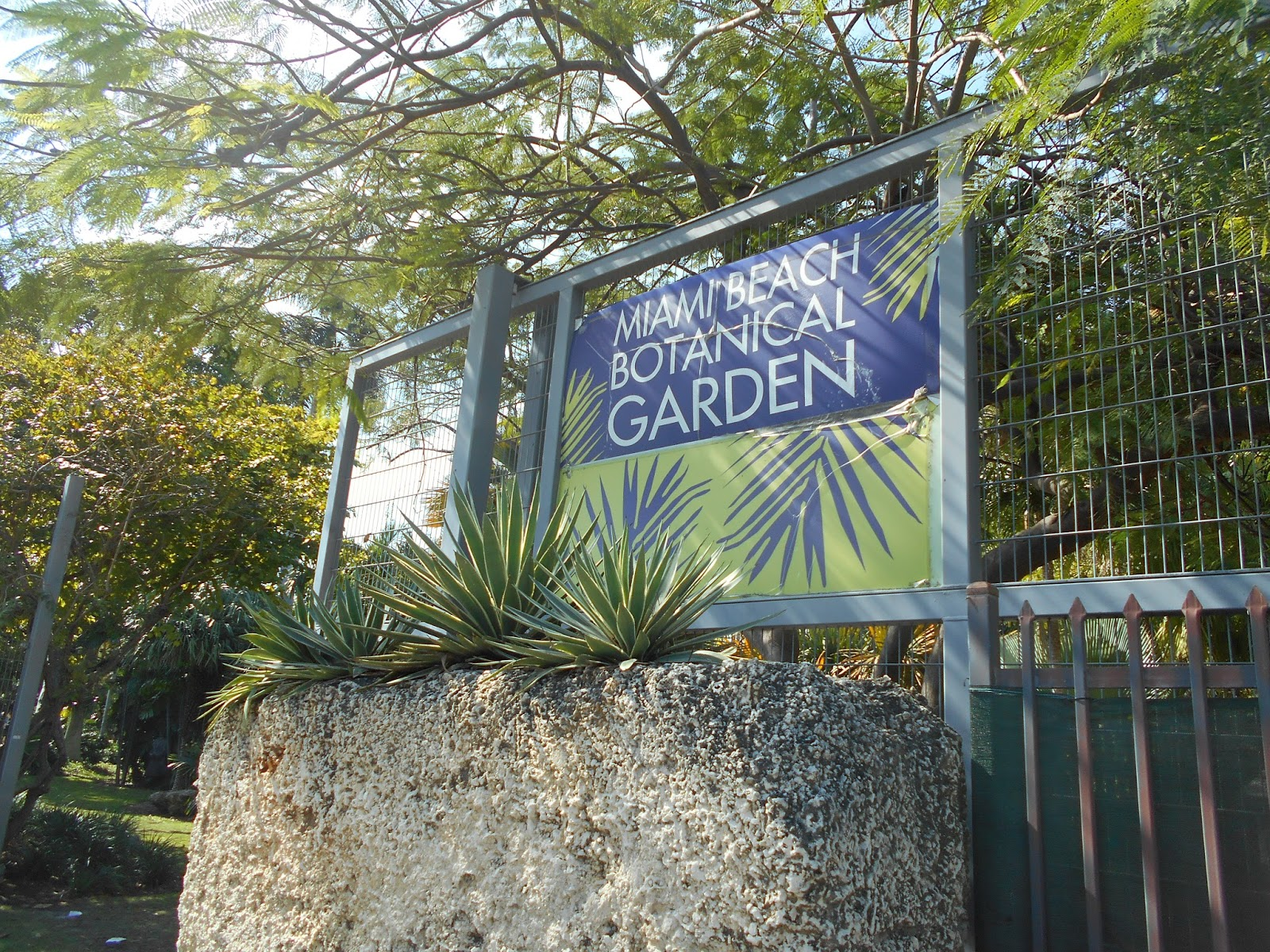 ... Miami Beach Botanical Garden. A Surprisingly Small, 2.5 Acre Paradise,  It Is Home To Tropical Plants, Trees, Shrubs And More Importantly A Much  Needed ...