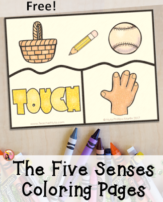 The Five Senses Free Puzzles