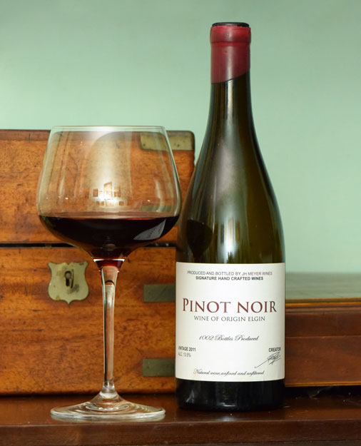 recipe: pinot noir best wine [28]