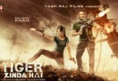 Tiger Zinda Hai 2018 Hindi Movie Watch Online
