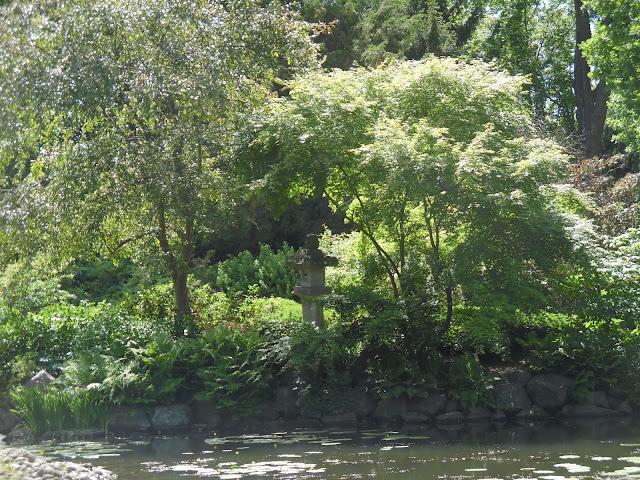 kamienna latarnia wśród drzew w ogrodzie japońskim