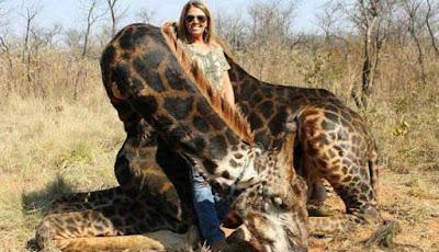 Pemburu berpose dengan jerapah hitam langka
