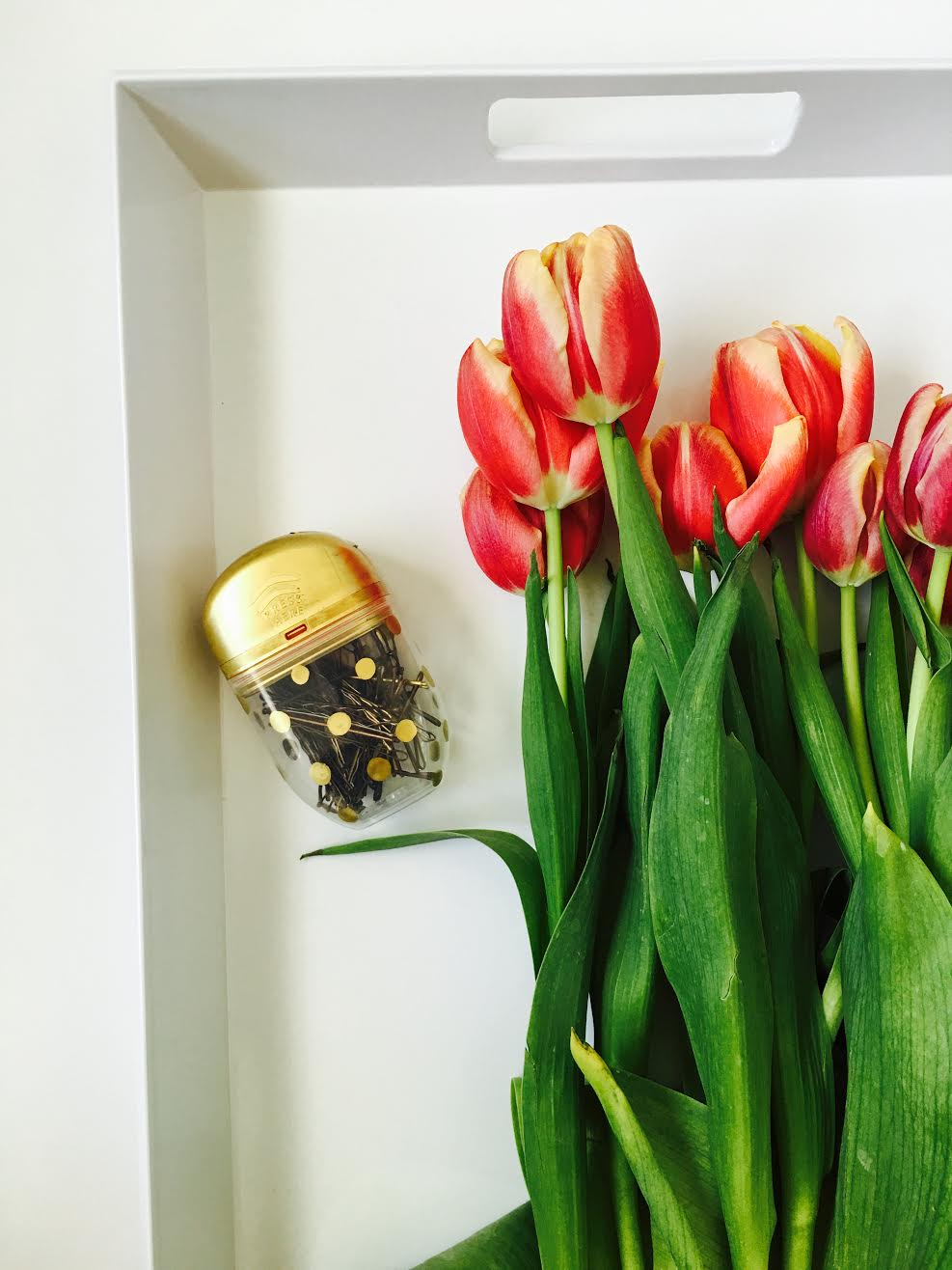 Tulips, Bobby Pin Holder, DIY project