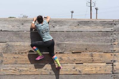 obstacole, zid, rezistenta, perseverenta, succes