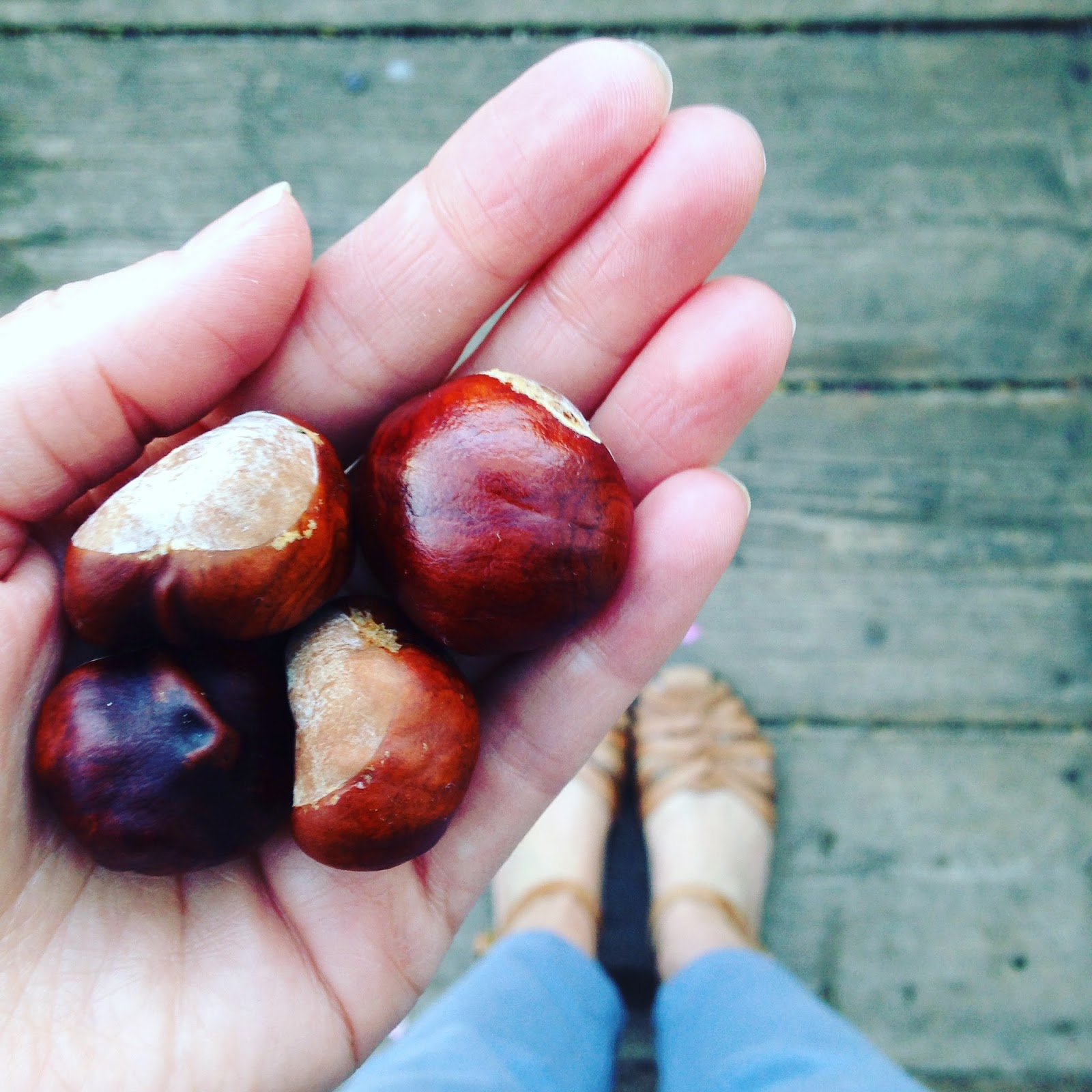 Adventures and Tea Parties Conkers