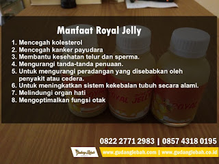distributor royal jelly,manfaat royal jelly, manfaat royal jelly, manfaat royal jelly nasa, manfaat royal jelly untuk kulit, manfaat royal jelly untuk ibu hamil, manfaat royal jelly thailand, manfaat royal jelly adalah, manfaat royal jelly asli, manfaat royal jelly untuk anak, apa mafaat dari royal jelly, manfaat royal jelly apa saja, manfaat royal jelly bagi wajah, manfaat royal jelly bagi kulit wajah, manfaat royal jelly bagi ibu hamil, manfaat royal jelly bagi tubuh, manfaat royal jelly bagi kesehatan, manfaat royal jelly buat ibu hamil, manfaat royal jelly bagi rambut, manfaat royal jelly bagi wanita, manfaat royal jelly dan bee pollen, manfaat royal jelly dan madu, manfaat royal jelly untuk janin, manfaat royal jelly untuk jerawat, manfaat royal jelly kulit, manfaat royal jelly untuk kehamilan, manfaat royal jelly untuk kanker, manfaat royal jelly utk kesehatan, manfaat royal jelly lebah madu, manfaat royal jelly untuk lambung, manfaat royal jelly madu, manfaat royal jelly murni grosir royal jelly, harga royal jelly, jual royal jelly asli, jual royal jelly murni, peternak lebah madu, Royal jelly, royal jelly asli, royal jelly murni, tempat beli royal jelly malang, royal jelly di solo, jual royal jelly jogja