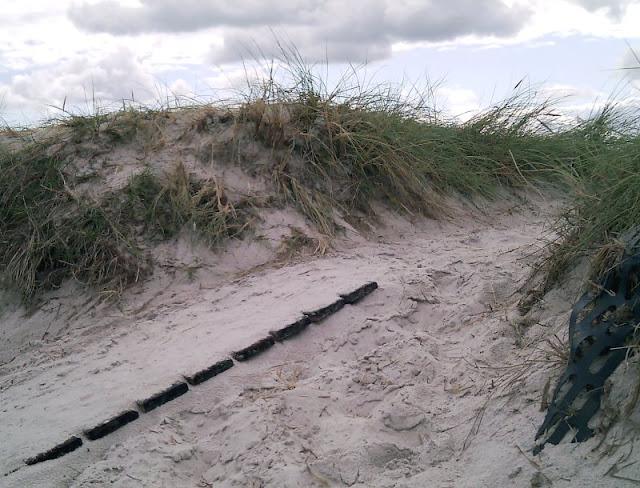 Perspektiven eines Küstenjungen (+ Verlosung): Auch aus der Sicht unserer Kinder waren die Ausflüge schön!