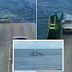 Video Shows 4WD Vehicle Slide Off at Fraser Island Ferry Into Water