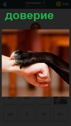 800 слов на руку человека животное положило свою лапу в качестве доверия 7 уровень