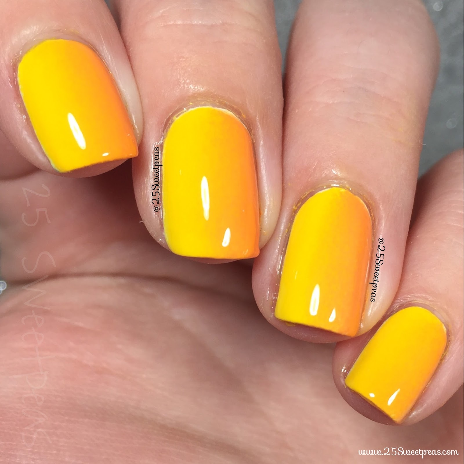Yellow to Orange Gradation