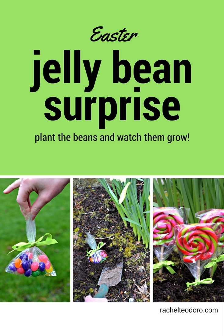Easter Jelly Bean Surprise Rachel Teodoro