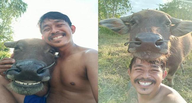 Karena Foto Dengan Kerbau Pria Ini Jadi Viral