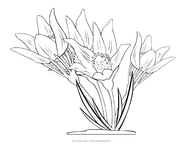 If For Any Reason These Colouring Sheets Of Flowers Are Not Lively Enough  We Have Some Cute Coloring Pages Of Butterflies With Or Without Flowers Too