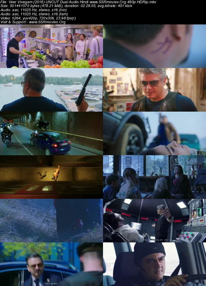 Veer Vivegam (2018) UNCUT Dual Audio Hindi 480p HDRip