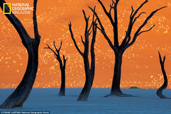 ¿Pintura o Realidad? Dunas en Namibia 2