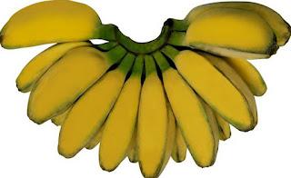 Jurnal kulit pisang ambon