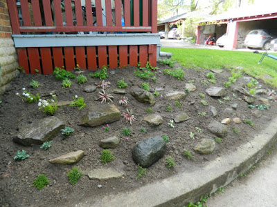 Forest Hill Toronto new rock garden after by Paul Jung Gardening Services