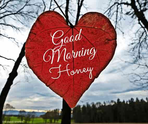 good morning honey photos hd