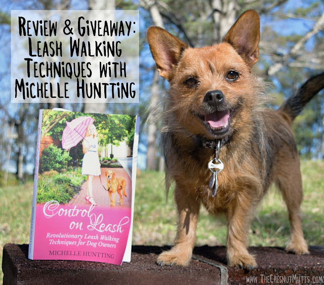 Review & Giveaway: Leash Walking Techniques with Michelle Huntting