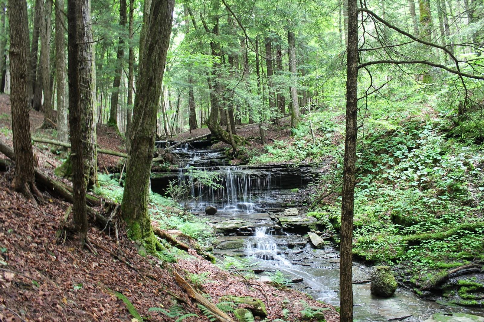 Morgan Hill Falls & Hemlock Glen | (Water)Falling in New York