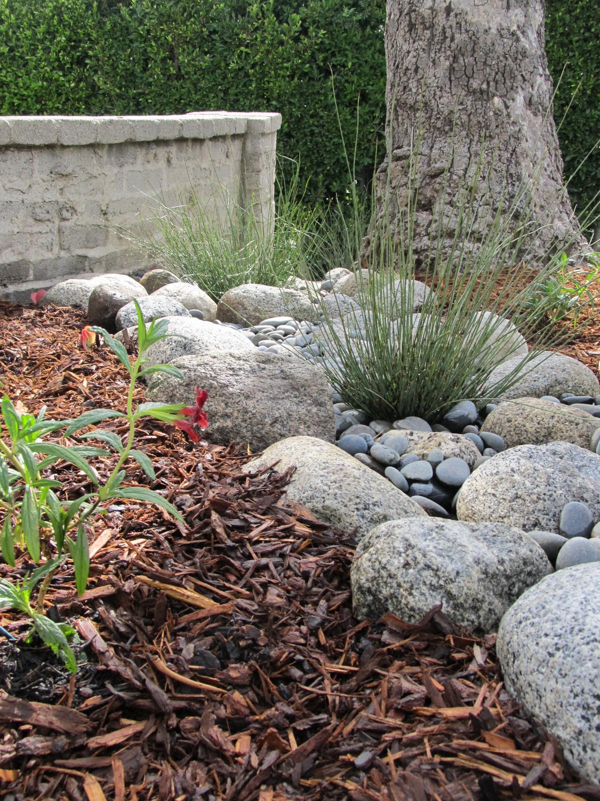 Fairy Yardmother Landscape Design: Dry Creek Bed