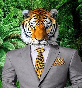 A tiger wearing a tiger tie