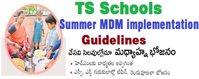 TS Schools,Summer MDM,implementation guidelines