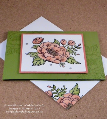 Stampin' Blends, Stamp Classes, Techniques