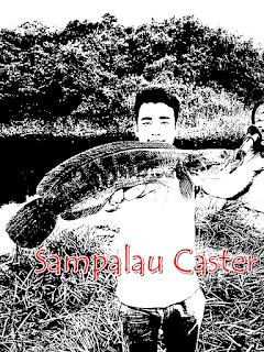 toman sabah, casting, sampalau caster, toman bottom, giant snakehead