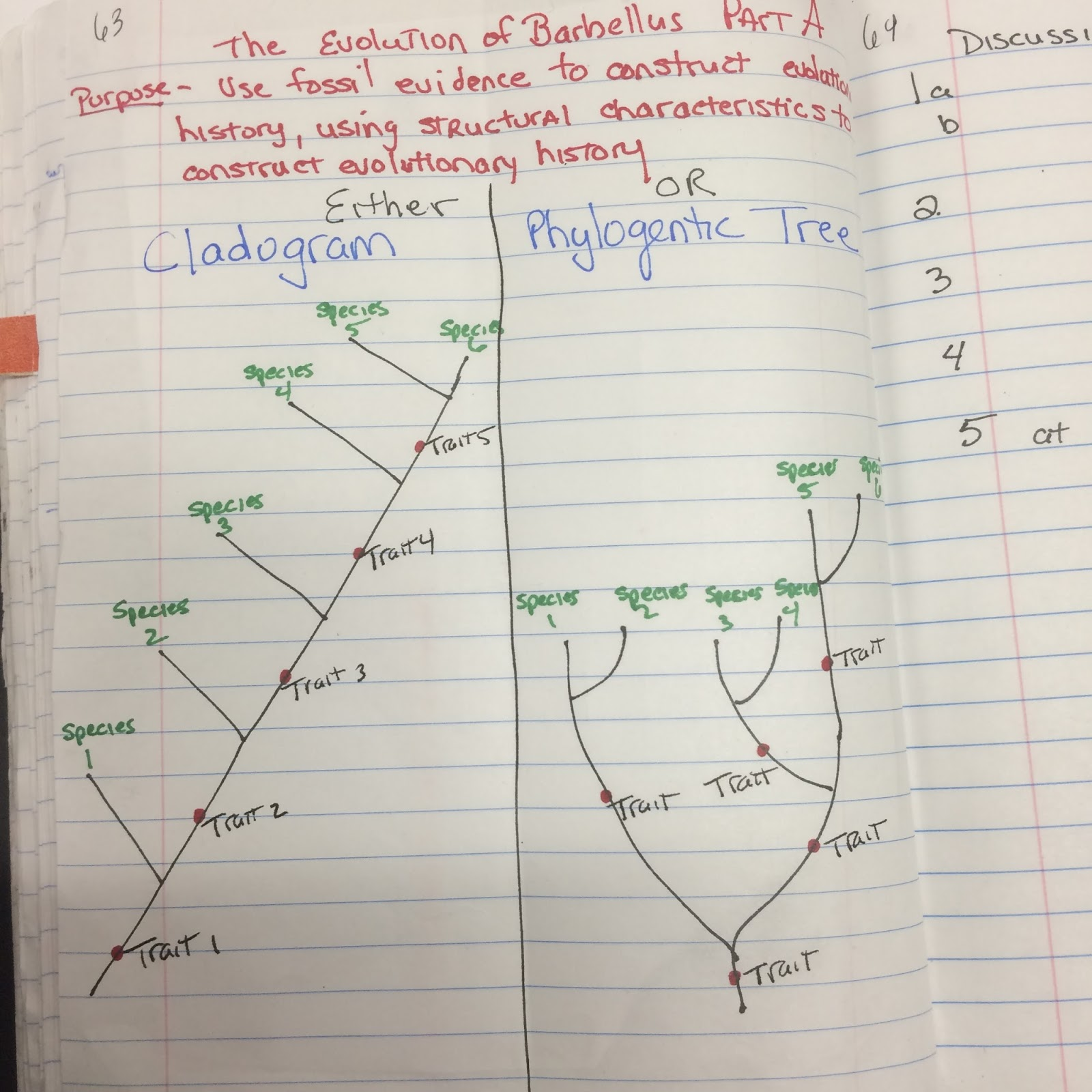 Mrs. Greeley Howard's Biology Class: January 2016