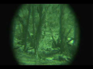 Bigfoot on Night Vision