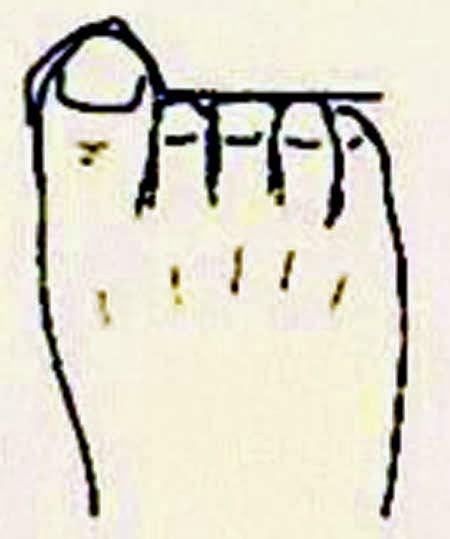 Human nature according to foot shapes in Hindi