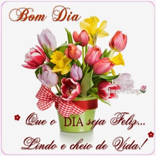 Flores Com Mensagem De Bom Dia