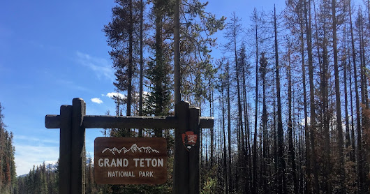 Ridiculous Road Trip #1, Part 26 - Grand Tetons