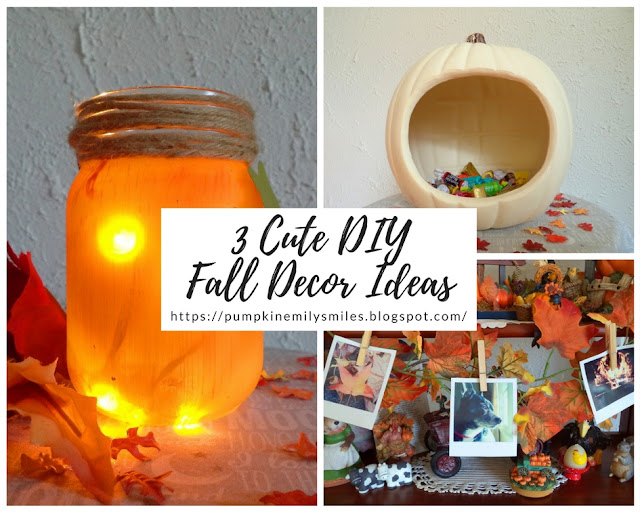 3 Cute DIY Fall Decor Ideas