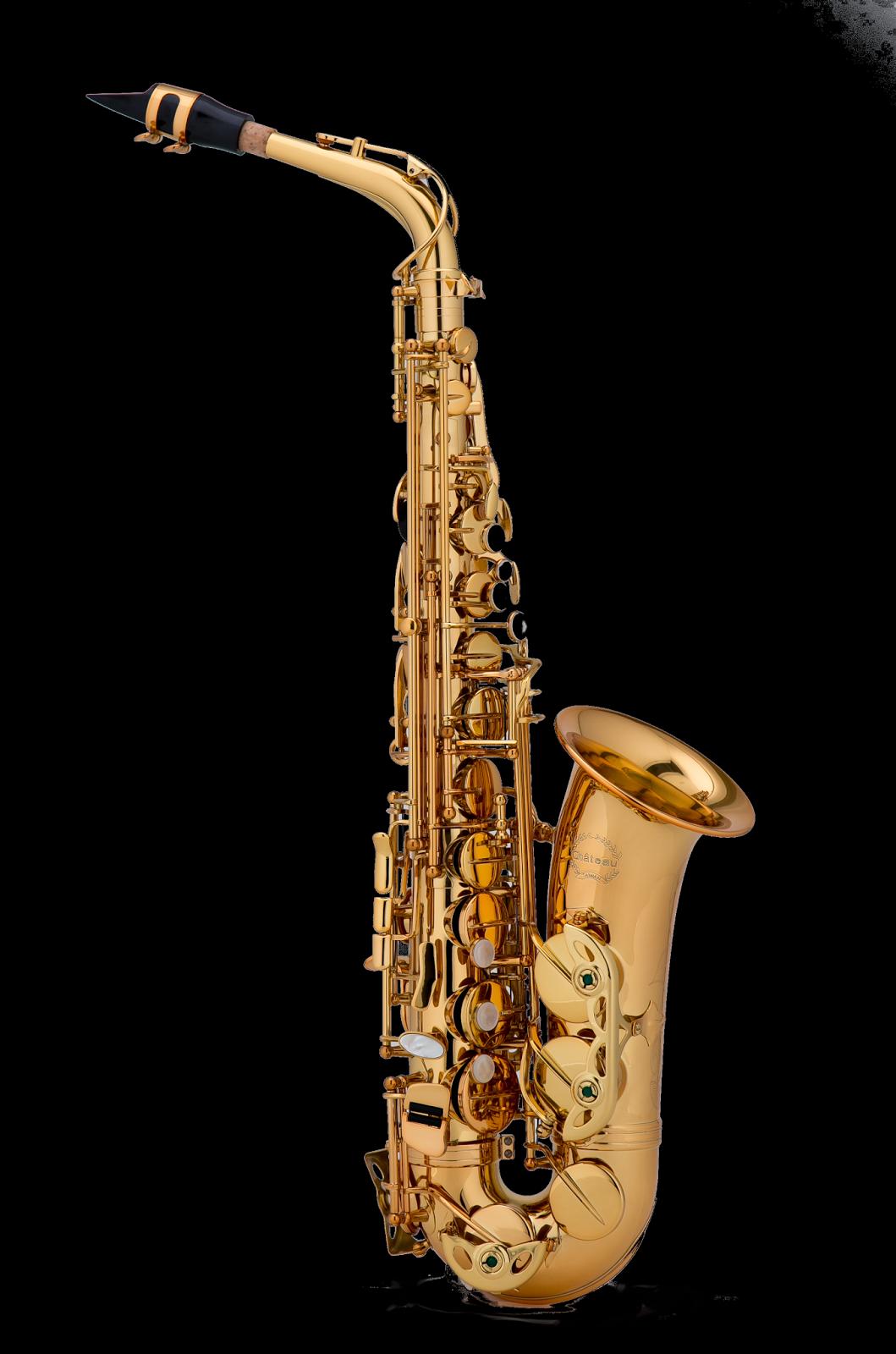 the saxophone corner my approved list of student saxophones. Black Bedroom Furniture Sets. Home Design Ideas