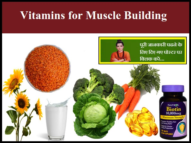 Essential Vitamins for Muscle Building
