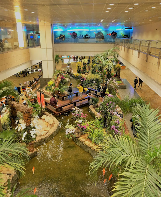 Changi Airport indoor garden