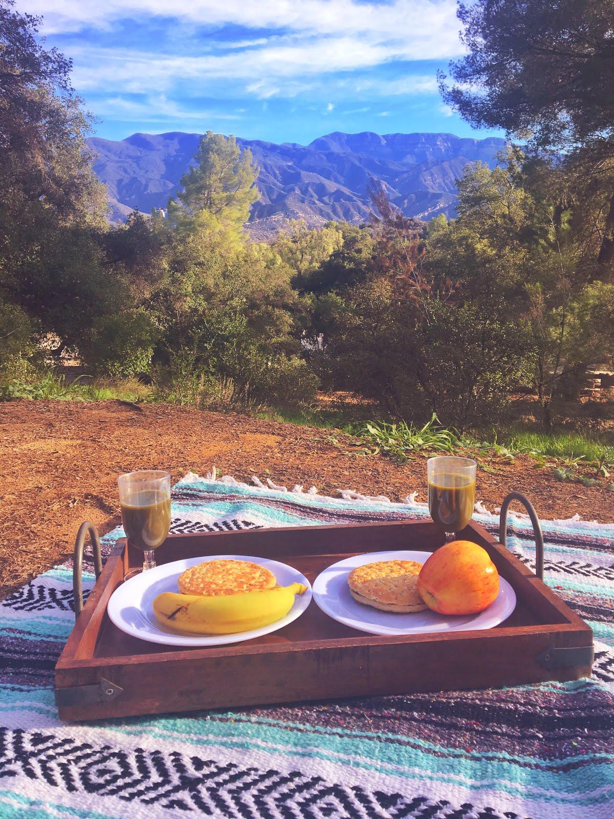 Prius Camping in Ojai   Colors and Coordinates