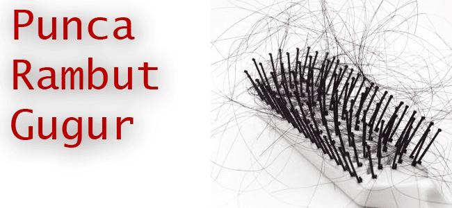 punca utama rambut gugur