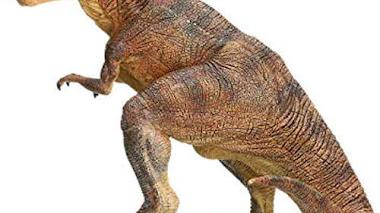 Tyrannosaurus Rex Papo 55001