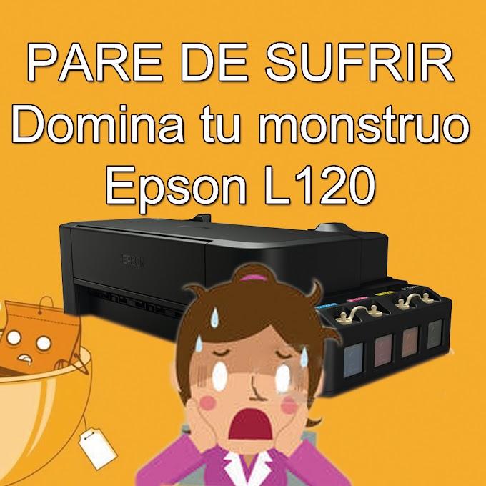 SOLUCIONA LOS PROBLEMAS CON TU EPSON L120 Y SUBLIMA FELIZ