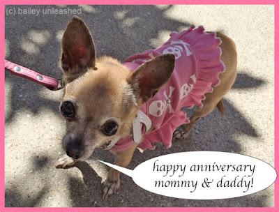 anniversary wishes | via baileyunleashed.com