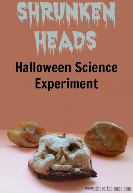 Shrunken Heads Halloween Science Experiment STEAM activity